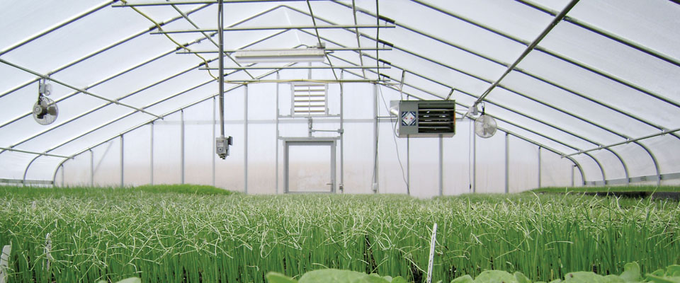 Pro Greenhouses