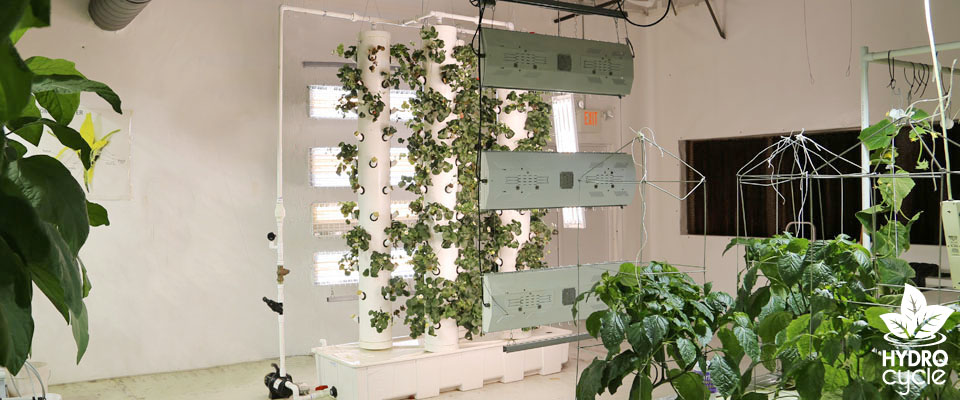 Vertical Aeroponic Systems