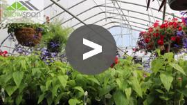 Nursery Greenhouses